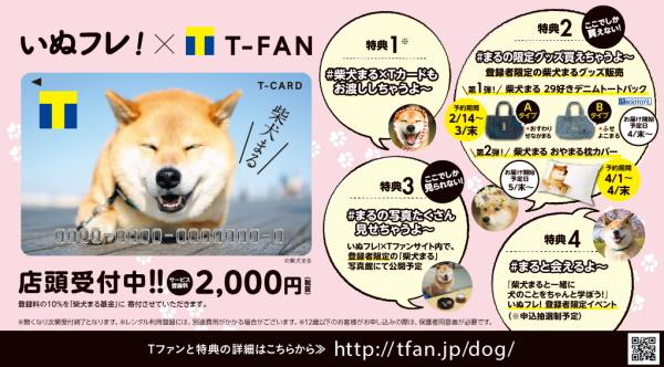 柴犬まるTカード